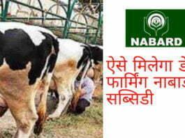 Nabard Pashupalan loan Yojana